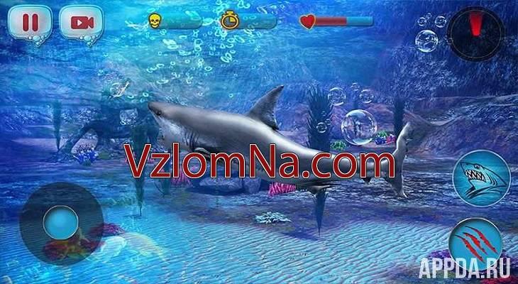 Hungry Shark Evolution Коды и Читы Золото, Энергия, Драгоценные камни и Здоровье